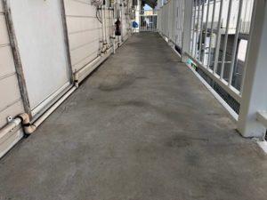 千葉県習志野市 外壁塗装 付帯部塗装 アパート 廊下 防水工事 (2)