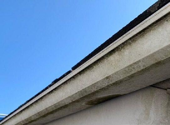 千葉県千葉市緑区 外壁塗装 事前調査 症状 苔・カビ・藻 コーキング劣化 (1)