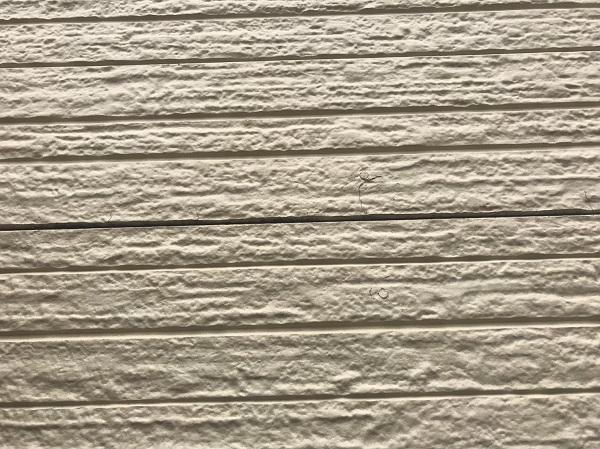 千葉県千葉市花見川区 外壁塗装 事前調査 外壁の劣化症状 (2)